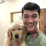 Ben Windward Animal Hospital